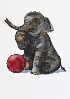 Baby elephant foot up with red ball