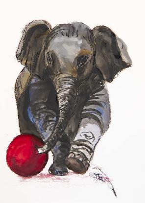 Baby elephant with red ball